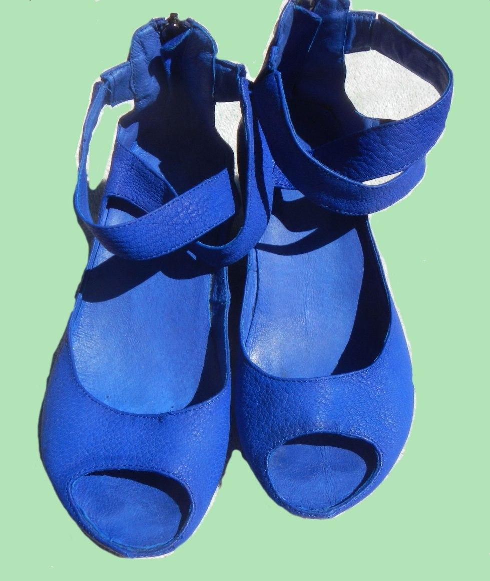Oxblood Red Shoe Dye